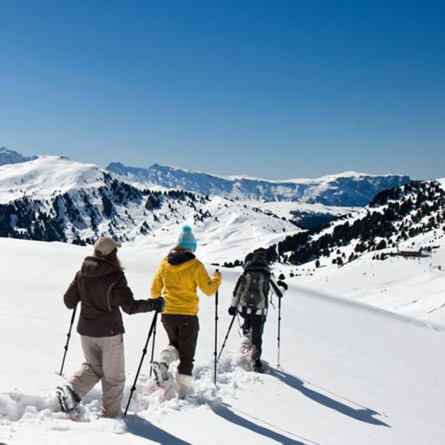 Schneeschuhwanderungen & Tourenski
